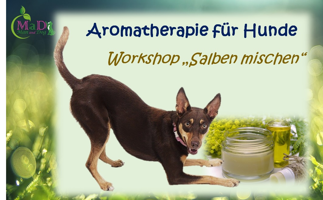 """Workshop """"Aromatherapie, Salben mischen"""""""